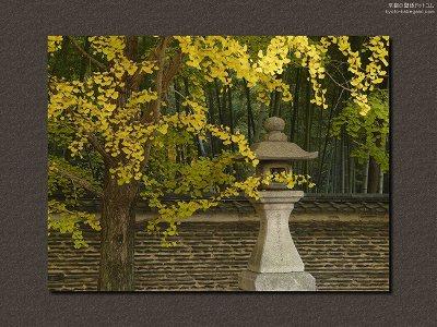 今宮神社15【ダウンロードする場合は右の画像サイズをクリックしてください】