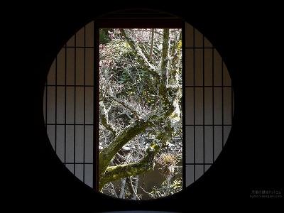雲龍院01【ダウンロードする場合は右の画像サイズをクリックしてください】
